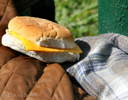 This sandwich was  provided by a homeless relief ministry in downtown Houston.