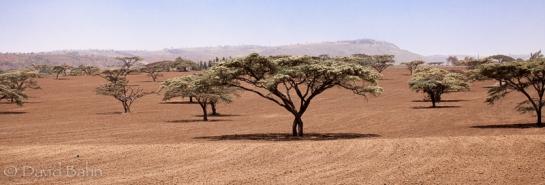 On the road to Kilgoris -a Landscape from Kenya