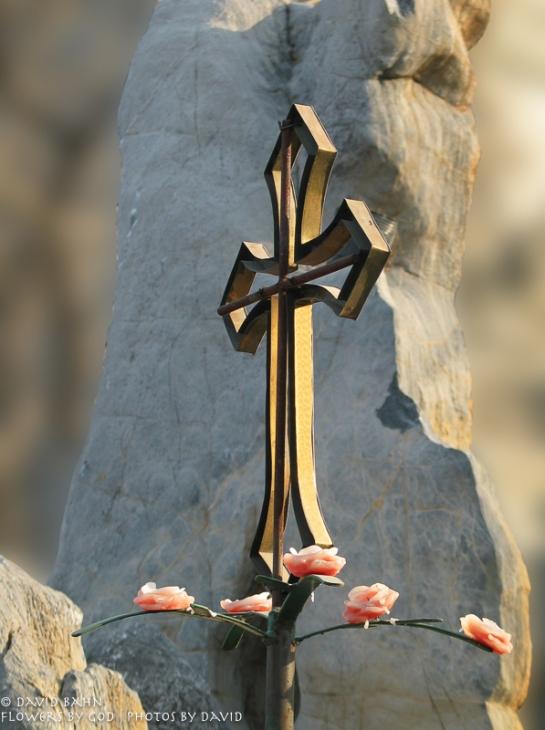 Flowers by God...Photos by David2007 Calendar