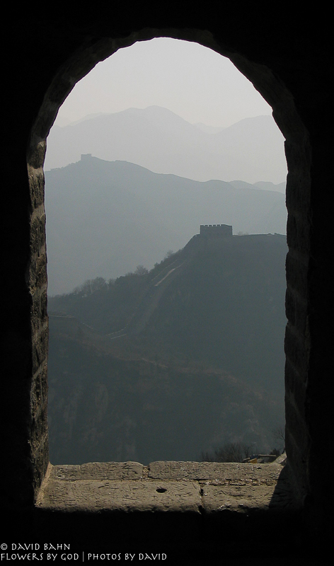 The Great Wall from The Great Wall 8-1